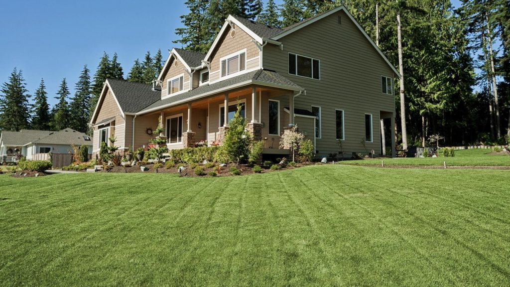 Real estate photos make the yard look bigger than it is.